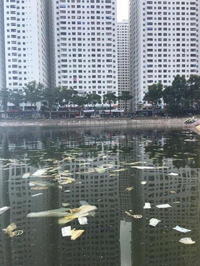 Rác thải bừa bãi ở hồ Linh Đàm