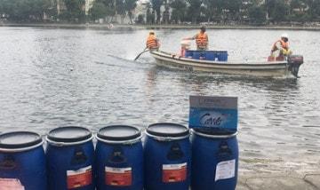 Các hồ tại Hà Nội bị ô nhiễm nặng