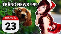 Bản tin Trắng News 999 ngày 23/12/2016 icon