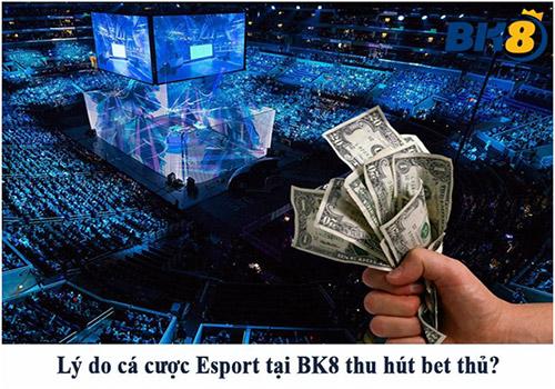 Lý do các cược Esport tại BK8 thu hút hàng ngàn bet thủ mỗi ngày 01