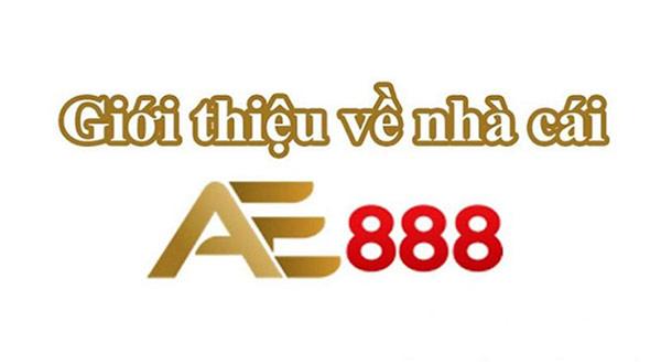 Nhà cái đá gà uy tín tại Việt Nam hiện nay 04